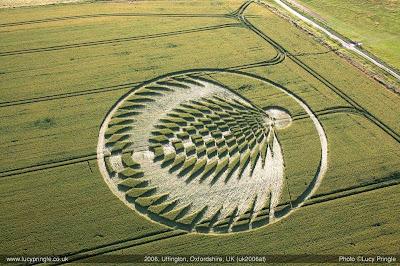 Crop Circle YOgyakarta
