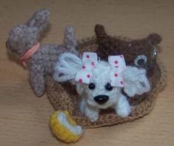 hondjes in een mand , chihuaha, maltezertje en mopshond