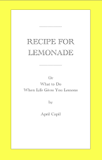 "Check out my e-book, ""Recipe For Lemonade"""