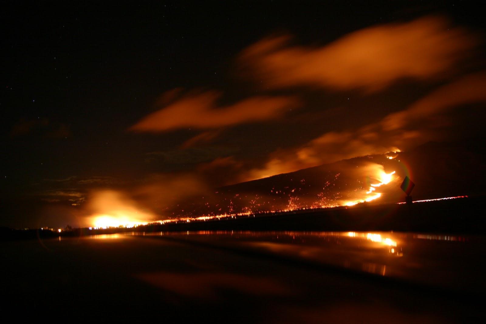 maui fire - photo #24
