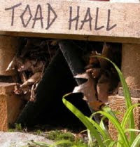 Toad hole id=
