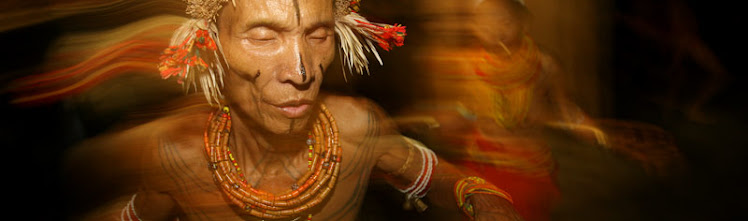 Vuelo de Icaros: Shaman's Apprentice - Father of Ethnobotany - Dr ...