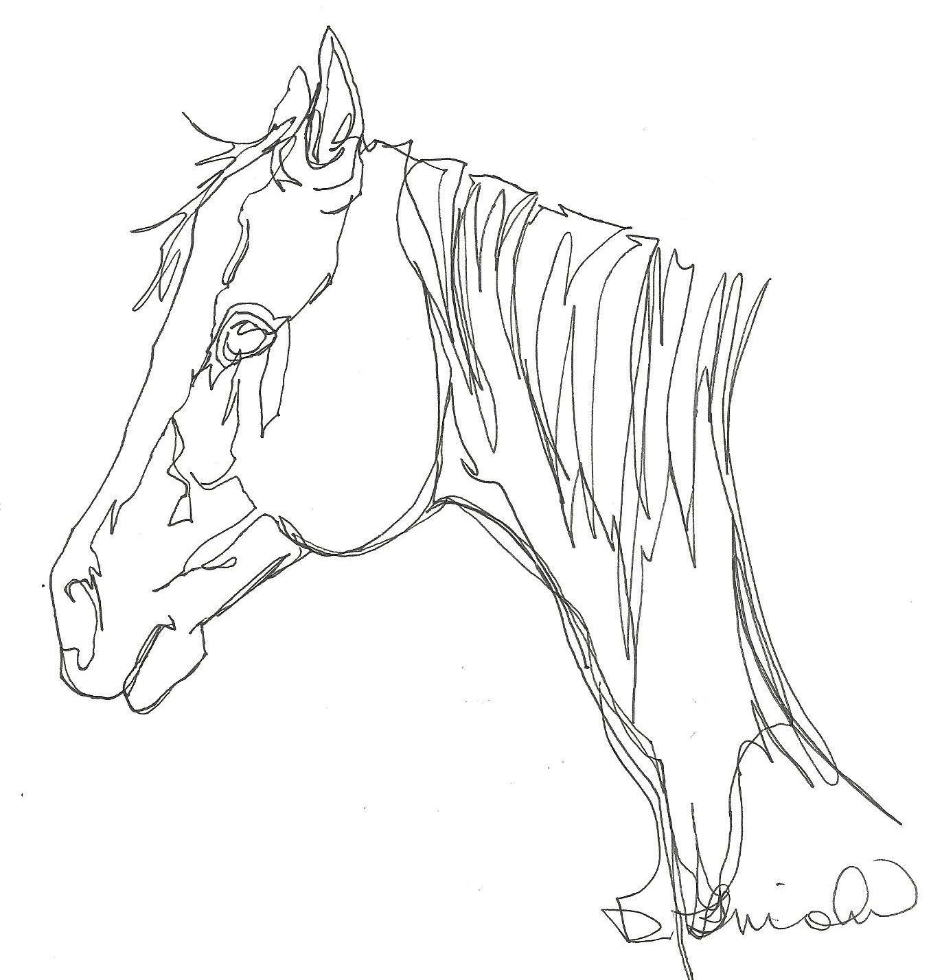 Horse line drawing - photo#16