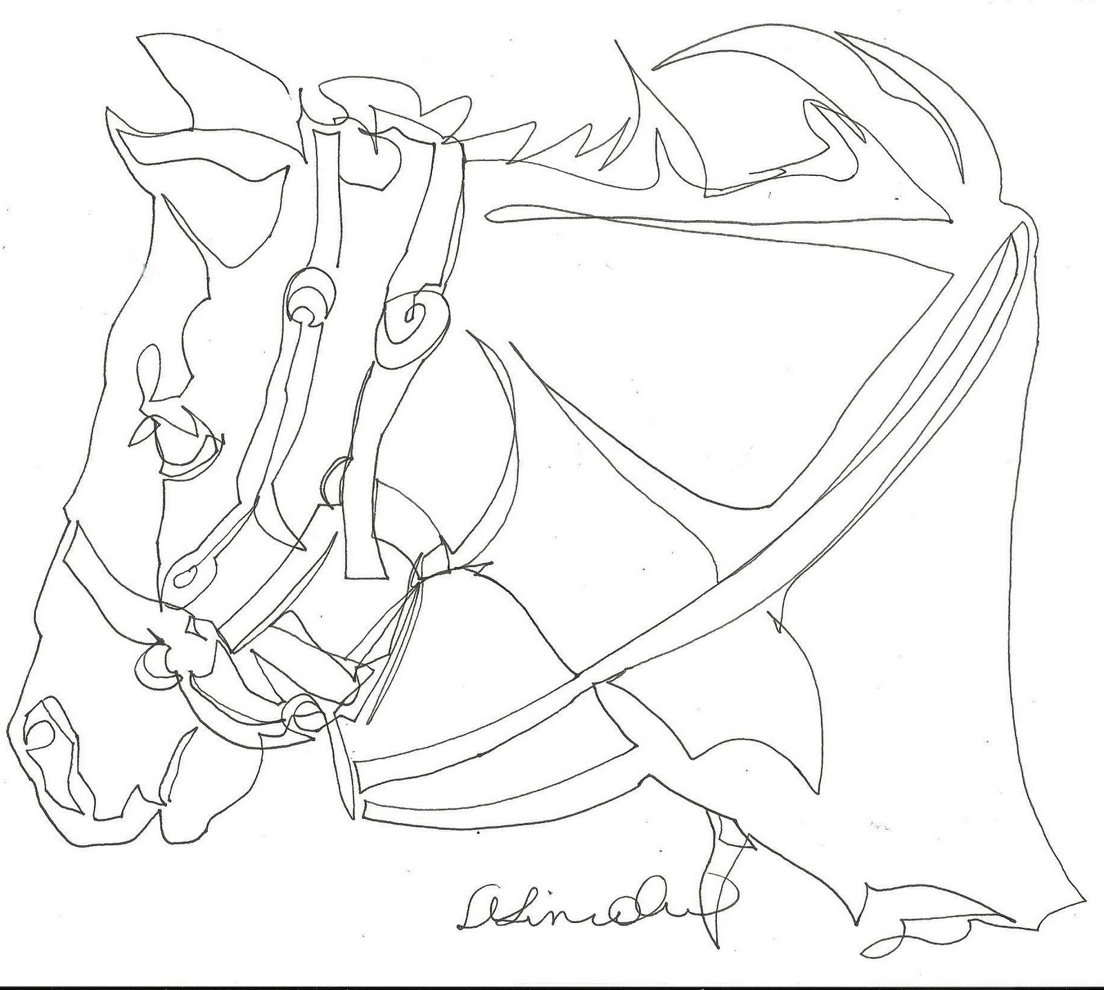 Line Drawings of Horses Heads Horse Head Continuous Line