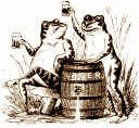 Frogs drinking beer