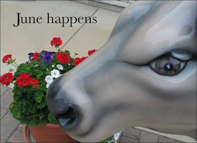 June Happens