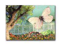 Photo of Spring Butterfly Aceo
