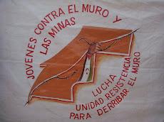 JÓVENES CONTRA EL MURO Y LAS MINAS