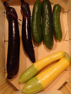 Japanese Eggplant, Zephyr Squash, Cucumbers