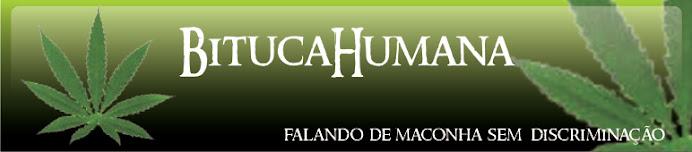 BitucaHumana