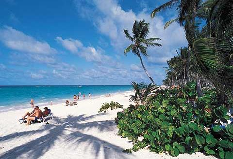 hoteles en punta cana. Punta Cana Dominican Republic