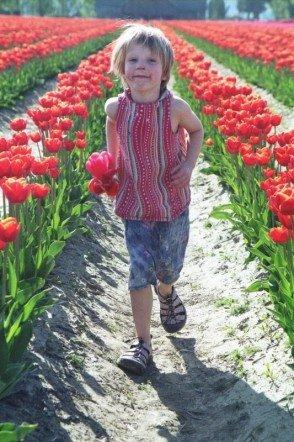 [tulipsy3]