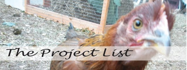 The Project List