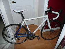 Amy's New Wheels
