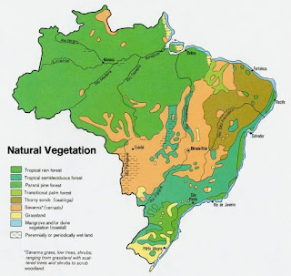 Map of vegetation in Brazil