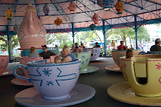 TEACUPS ARE STILL FUN FOR EVERYONE