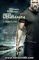 Sed de venganza (2010) online y gratis