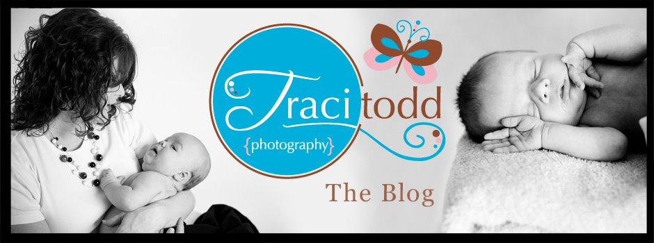 traci todd photography
