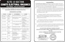 MARTES 15 DE JUNIO ELECCIONES UNIVERSALES EN EL SUTE 13 SECTOR - CRONOGRAMA ELECTORAL 2010
