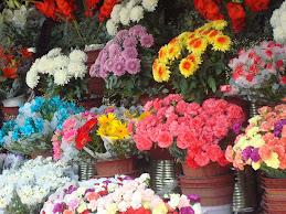 Flores en la entrada a el cementerio la chacarita