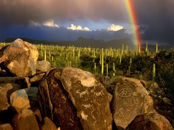 A beautiful desert scene with a rainbow, cacti and some Native American art engraved in some stones.