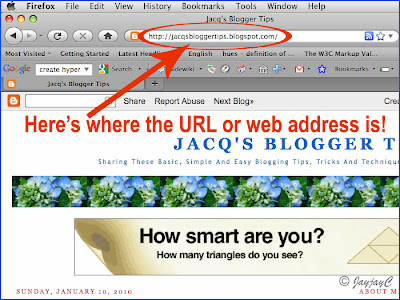 Image to illustrate the positioning of the URL or web address in a browser window