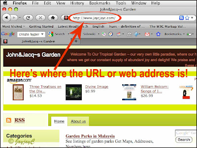 Screen shot of a browser window to illustrate the location of the URL or web address