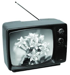 [Image: 12-inch-Black-White-Television.jpg]