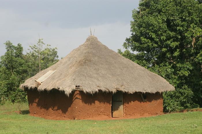 Indian mud pot diana jayasauri davei raja ratnam