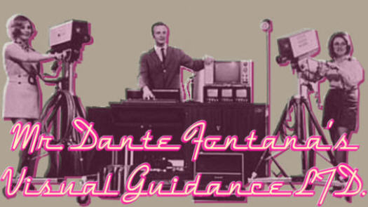Mr. Dante Fontana's Visual Guidance LTD. 4.0