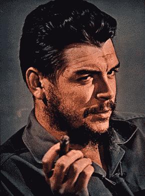 جيفارا...Guevara
