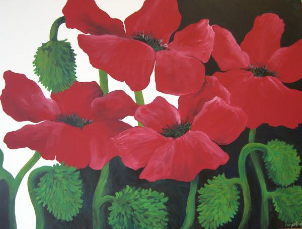 Poppies ....