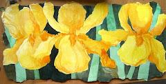 Yellow Iris Trio