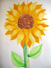 Alex' sunflower.