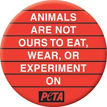 Los animales no son nuestros para comerlos, llevarlos encima o experimentar con ellos