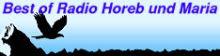 Ein Videoblog