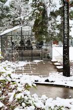Växthuset, vinter