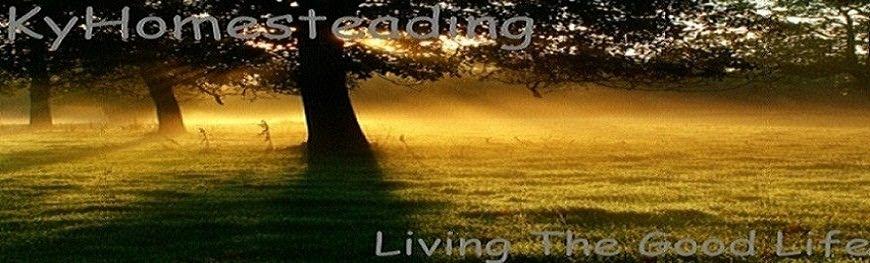 Homesteading for Does homesteading still exist