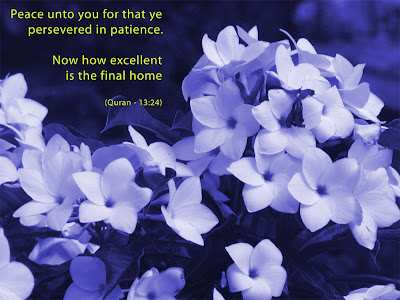 Quran 13:24 Purple Flower Wallpaper