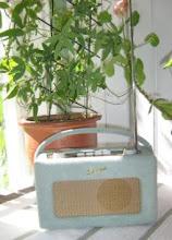 Roberts Radio i mitt uterum bland pelargonerna