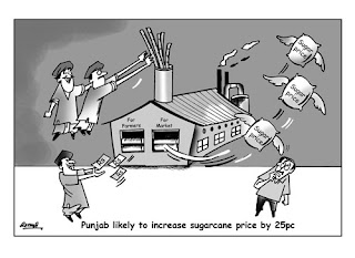 cartoon newspaper pakistan thenews