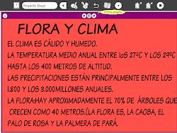 2-FLORA Y CLIMA