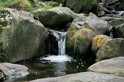 Detalle del arroyo de Castañarejo, ahora con poca agua