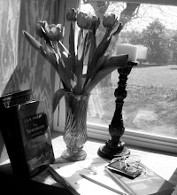 My world in Shades of Gray