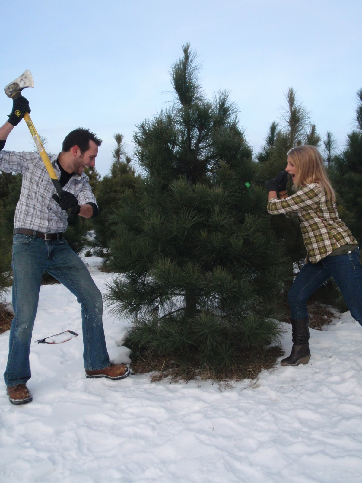 Hammers and High Heels: Our Christmas Tree Adventure: Cutting It ...