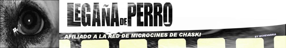 Microcine Legaña de Perro