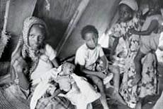Free Eritrea & Ethiopia