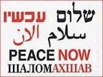 ¡¡¡Paz Ahora!!!