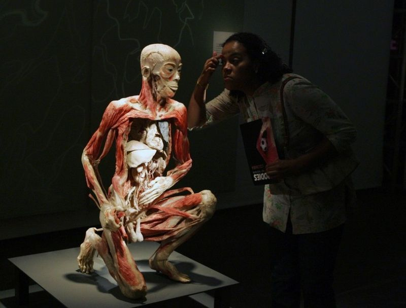 http://3.bp.blogspot.com/_zBTLUiqFtxk/TP9LXncJSpI/AAAAAAAAC7M/YQbqR-bWHw0/s1600/Exhibition_Worlds_body_popgive_14.jpg