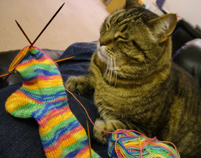 My Furry Purry Sock-Making Assistant